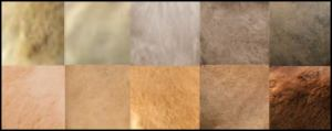 Colours - Camel Hair Tones