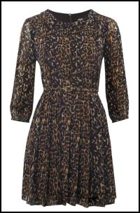 Leopard Print Long Sleeve Pleated Short Dress
