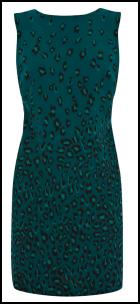 Teal Animal Print Dress Fashion for Winter 2011/12