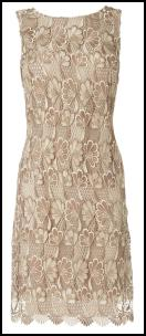 Top Fashion Trend - Ecru Lace Straight Shift Dress.