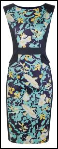 Dorothy Perkins Duck Egg Bird Print Dress.