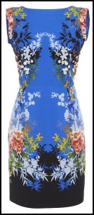 Oasis Blue Floral Print Border dress.