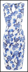 Oasis SS12 Blue Flower Dress on White.