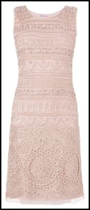 Phase Eight Nude Pink Tape Work Lace Dress.