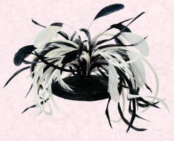 Sinamay Disc with Combs & Feathers, Black/White �25