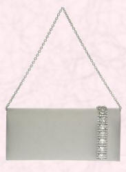 Occasionwear bag from Debenhams